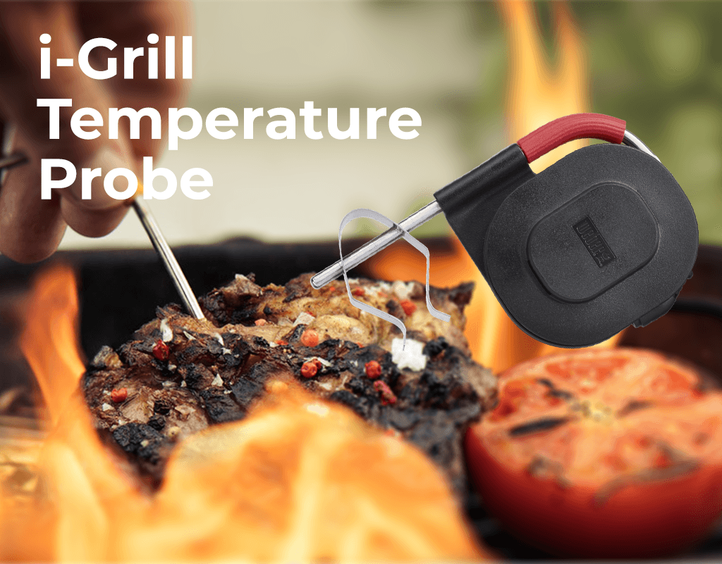 Digital Meat Thermometer – Do I Need One?