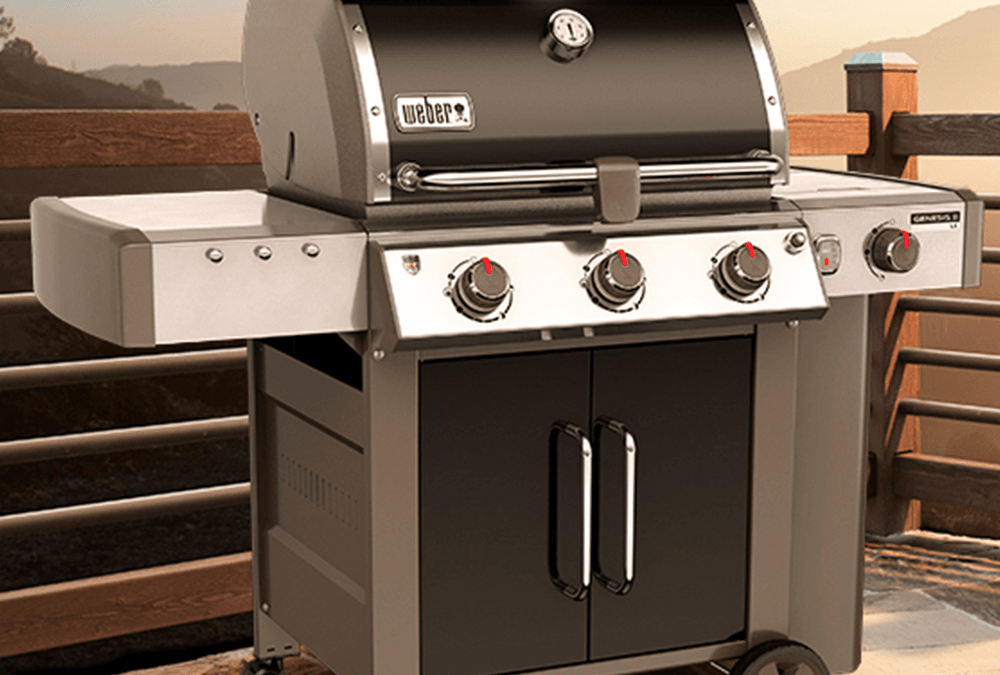 MEET THE WEBER GENESIS II